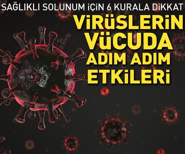 Son dakika: Virüslerin vücuda adım adım etkileri...