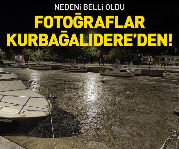 Son dakika: Fotoğraflar Kurbağalıdere'den!