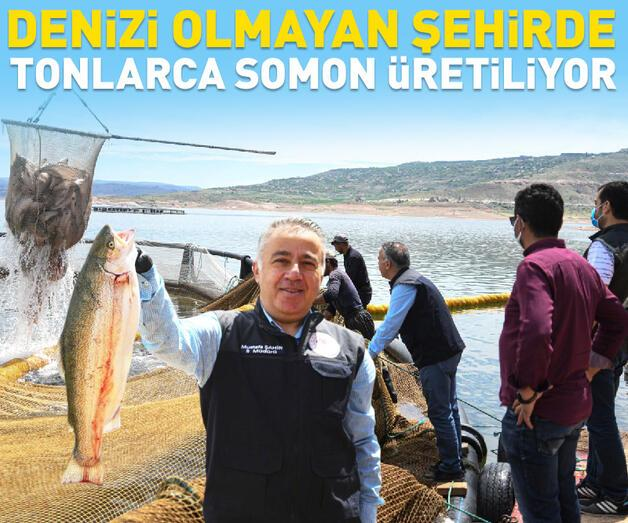 Son dakika: Denizi olmayan Kayseri'de somon üretimi
