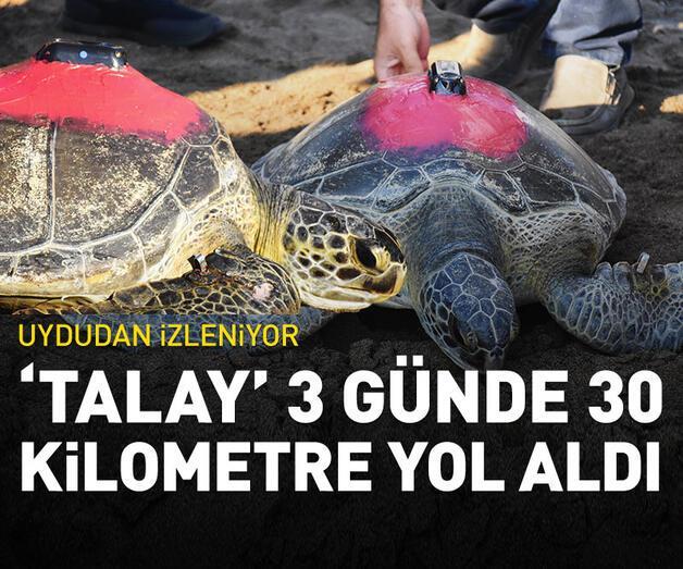Son dakika: 'Talay' 3 günde 30 kilometre yol aldı