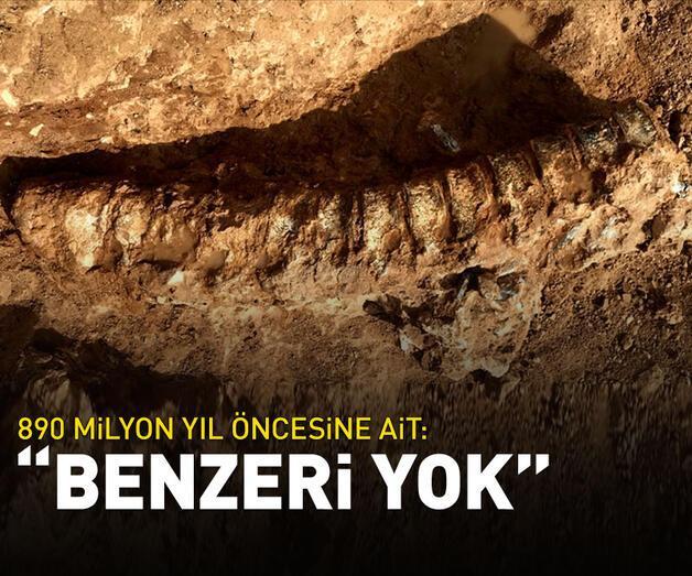 """Son dakika: 890 milyon yıl öncesine ait: """"Benzeri yok"""""""