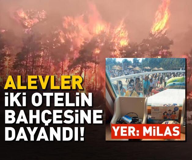 Son dakika: Milas'ta orman yangını; alevler iki otelin bahçesine kadar dayandı
