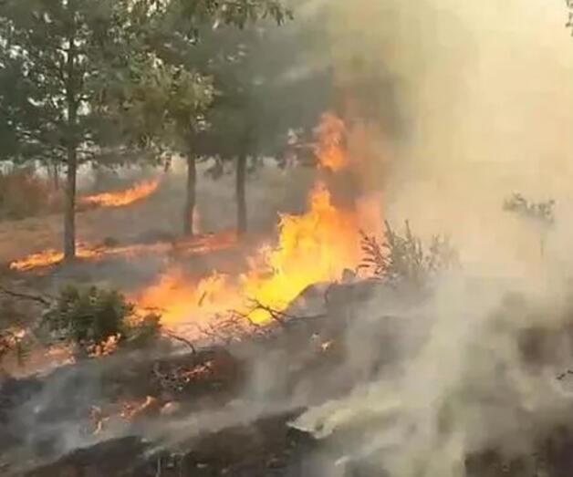 Son dakika: Bir kötü haber de Uşak'tan! Orman yangını evlere sıçradı