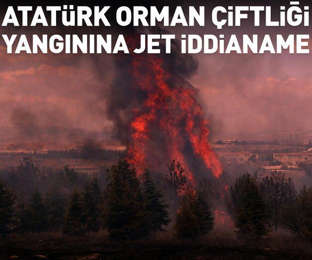 Son dakika: Atatürk Orman Çiftliği'ndeki yangın soruşturmasında jet iddianame