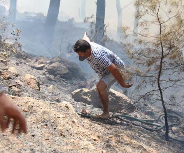 Son dakika: Bodrum'daki orman yangınını söndürmek için herkes seferber oldu