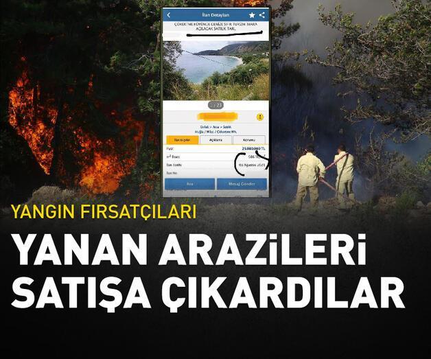 Son dakika: Yangın fırsatçıları: Yanan arazileri satışa çıkardılar