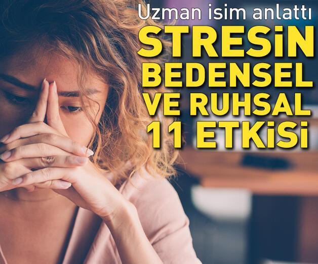 Son dakika: Stres anında vücudumuzda neler oluyor?  Prof. Dr. Osman Müftüoğlu yazdı...