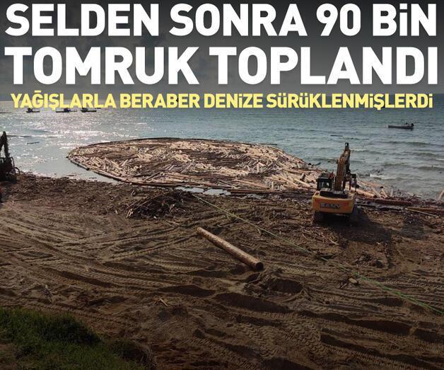 Son dakika: Sel bölgesinde 90 bin tomruk toplandı