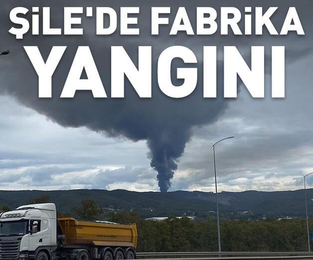 Son dakika: Şile'de fabrika yangını