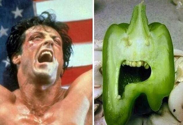 Çok paylaşılan komik fotoğraflar