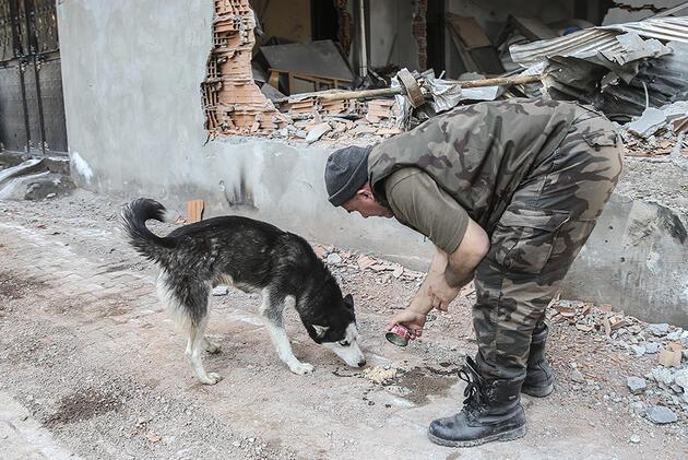 Cizre'de operasyonlardan sonra ilk kareler