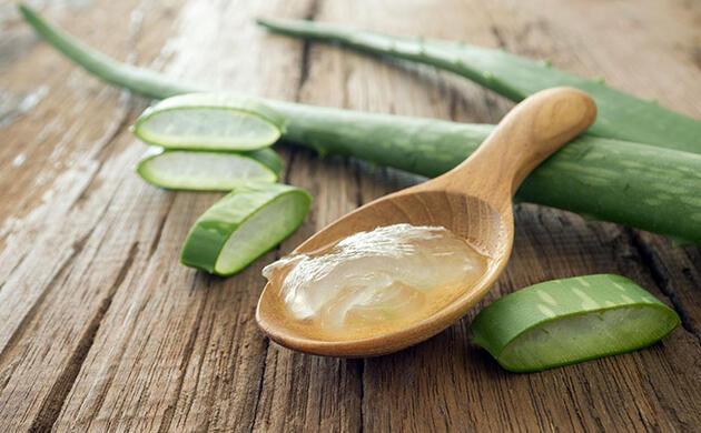 Daha sağlıklı ve doğal bir yaşam için Aloe veranın 9 mucizevi faydası