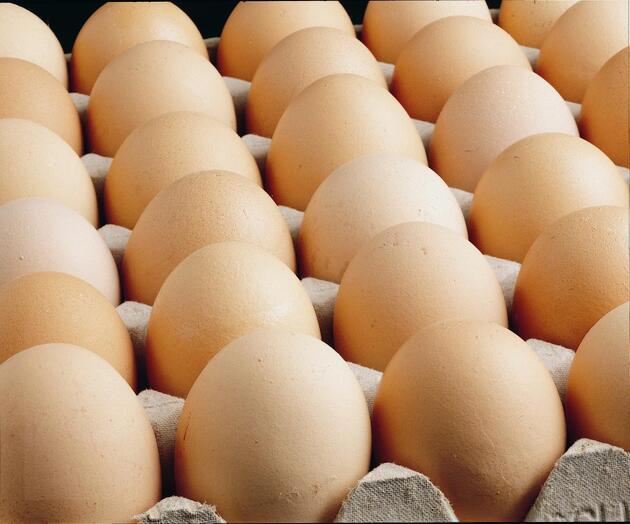 Yumurta satışında yeni dönem! Bu numaralara dikkat!