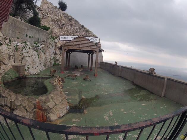 Akdeniz'i Atlas Okyanusu'na Bağlayan Nokta: Cebelitarık