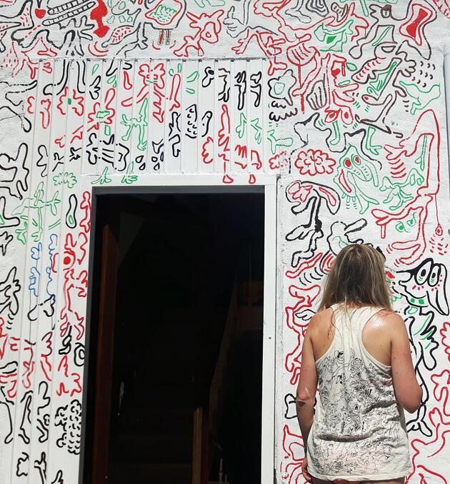 Boydan Boya Evinde çizim Yapmadığı Duvar Kalmadı