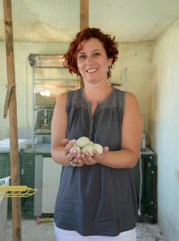 Bu okulda tavuk yetiştiriliyor