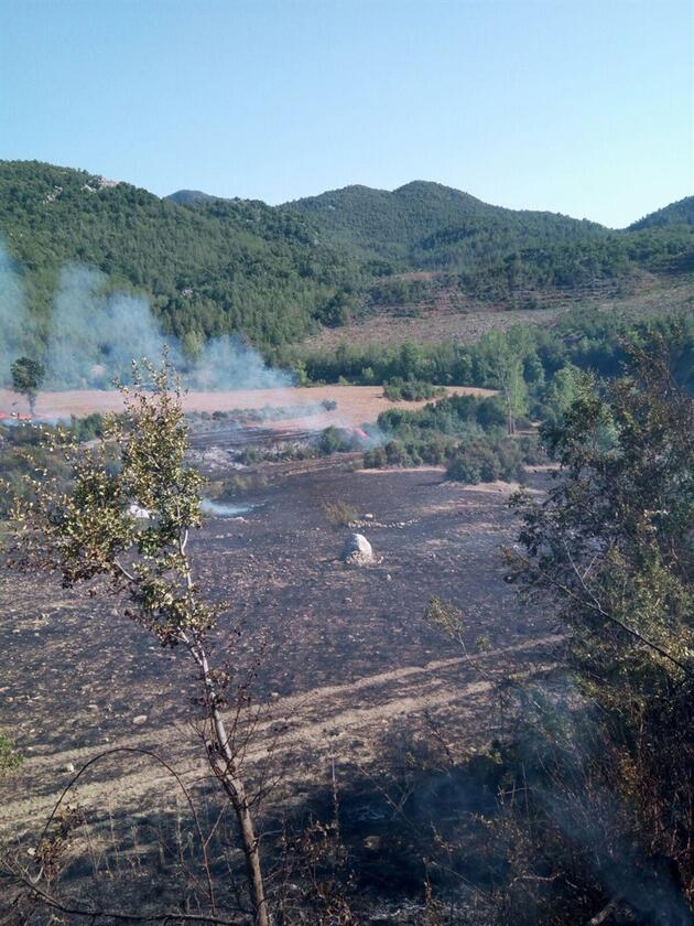 Anız yangını 4 hektar ormanı yaktı