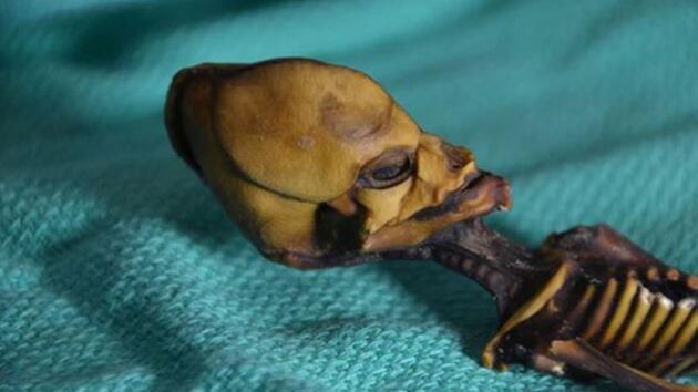 Atacama Çölü'nde bulunan 'uzaylı iskeletinin' sırrı çözüldü