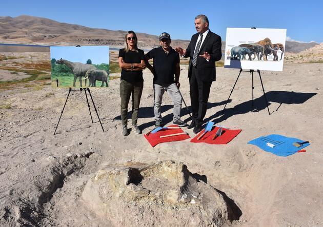 Kayseri'deki 10 milyon yıllık fosiller için harekete geçildi