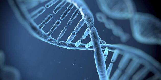 Dünyanın ilk 'genetik tasarımlı' bebekleri doğdu
