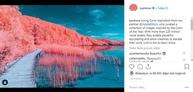 Yılın Pantone rengi canlı mercan ve iç mekana etkileri