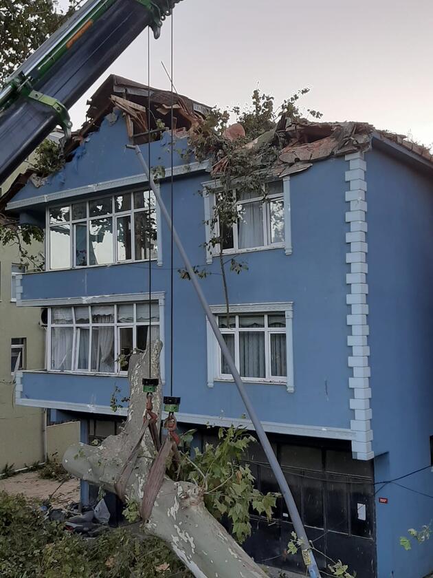 Beykoz'da dehşet! Dev çınar ağacı binanın üzerine böyle devrildi