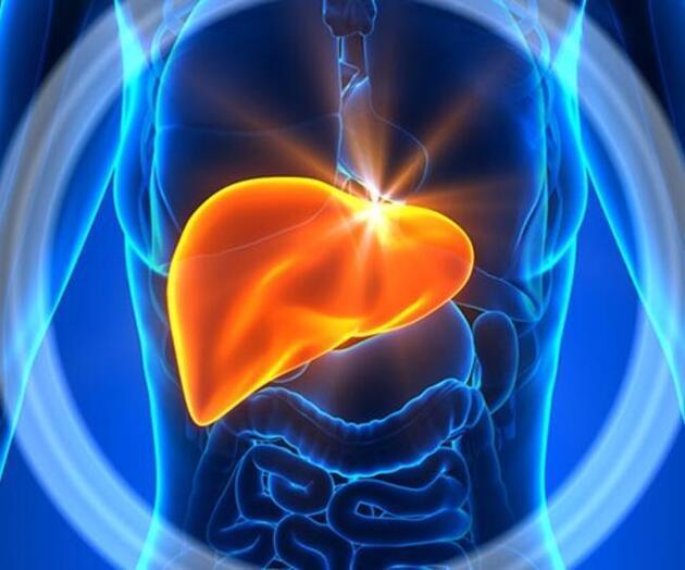 Karaciğer yağlanmasını önleyen mucize yöntem!