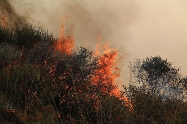 İzmir ve Muğla'da yangın!