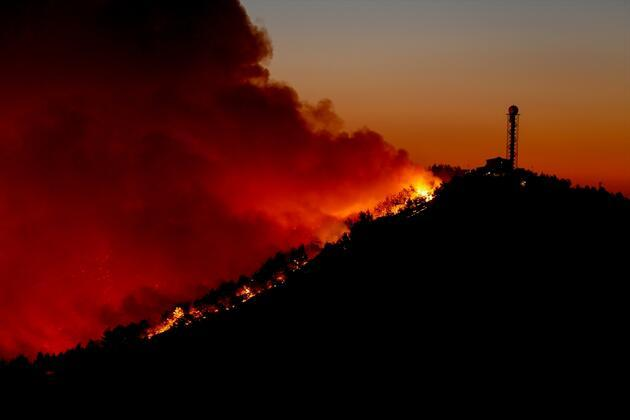 İzmir'deki yangında son durum!
