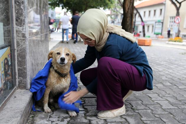 Yağmurda ıslanan köpeği kıyafetiyle kuruladı