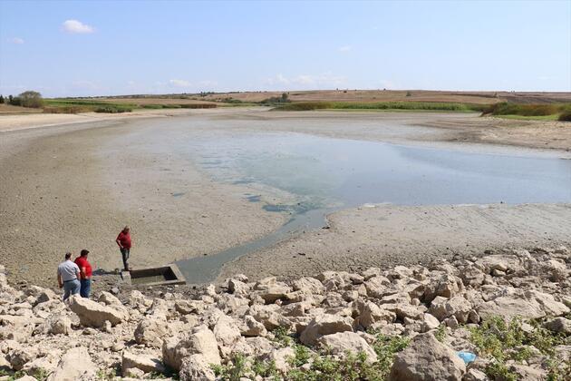 Kırklareli'nde korkutan balık ölümleri