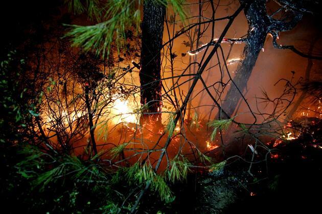 Hatay'da 25 farklı noktada yangın