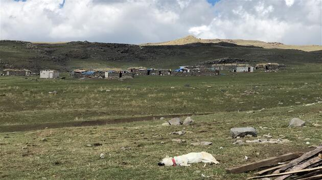 Kars'ta yaylacıların dönüş yolculuğu