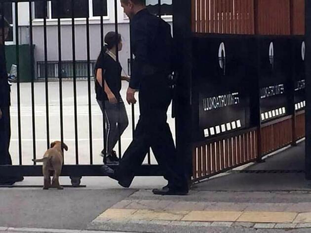 Uzaklaştırmaya çalıştığı köpeği, çocuklar isteyince okula aldı