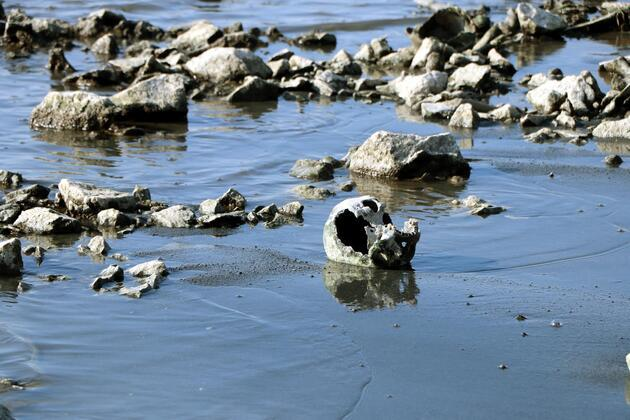 Van Gölü'nde insan kemikleri bulundu!