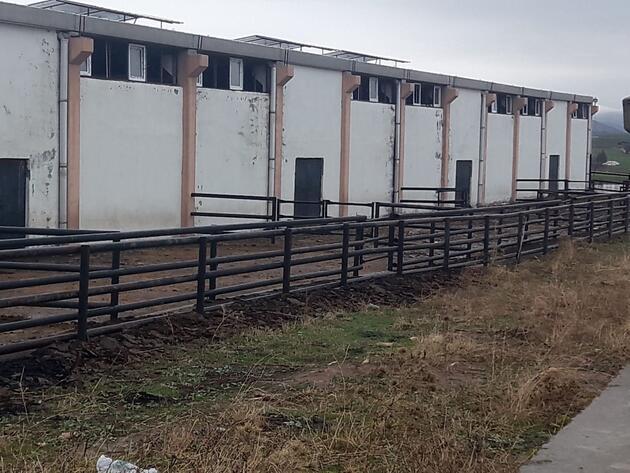Diyarbakır'da bir Çiftlik Bank vakası daha