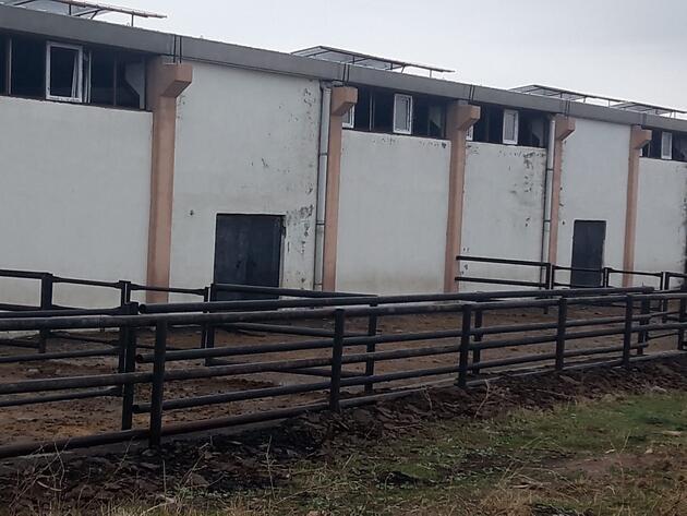 İkinci Çiftlik Bank vurgunu! 20 milyon lira dolandırdılar