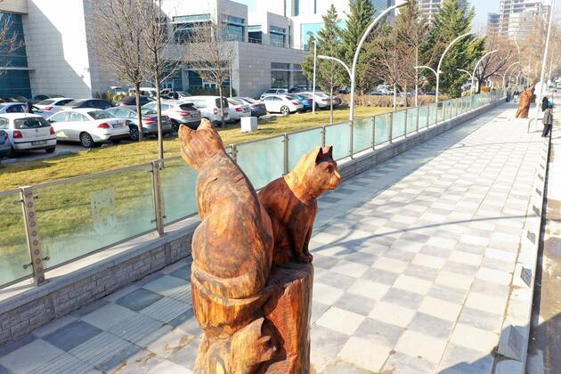 Kuru ağaçlar sanat eserine dönüştürülüyor