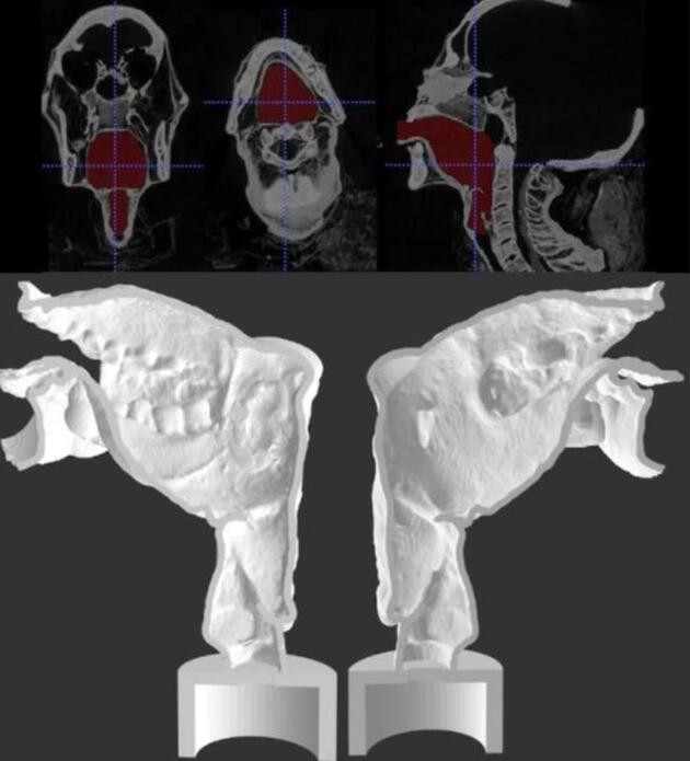 3 bin yıllık mumyanın sesi hayata döndürüldü