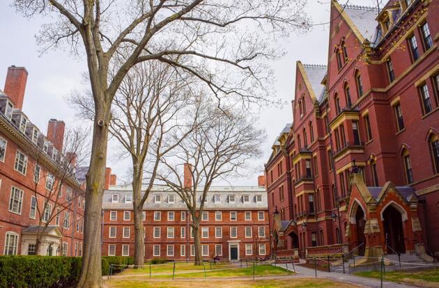 Harvard ile Yale'e 'gizli fon' soruşturması: 6.6 milyar dolar rapor edilmemiş
