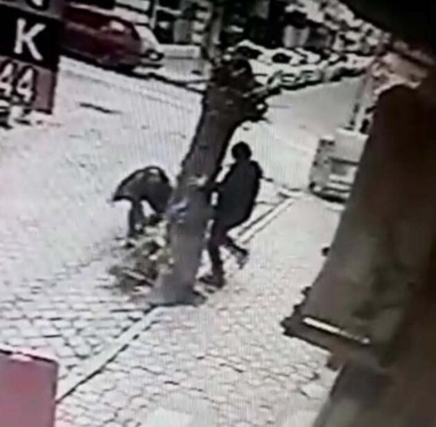 Ağaca bağlı Rus finosuna pitbullar saldırdı