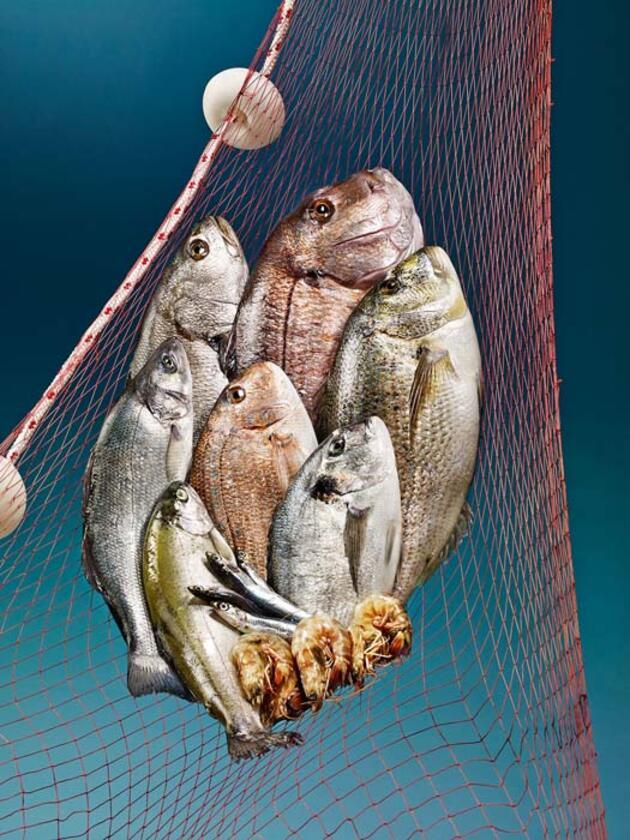 Koronavirüse karşı balık, yumurta ve beyaz et kalkanı