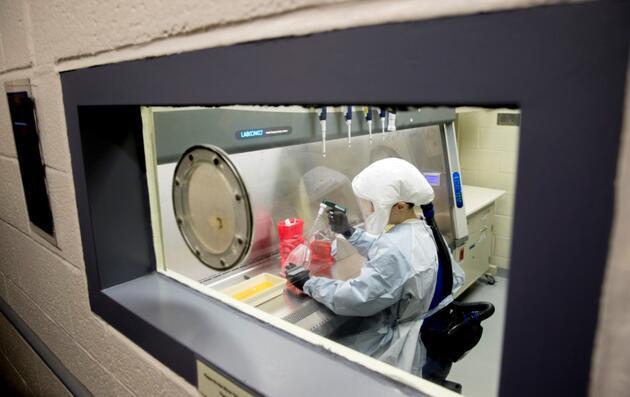 İzlanda'da bilim insanlarından 'koronavirüs' keşfi: 40 farklı mutasyon tespit edildi