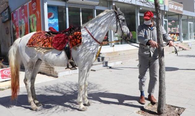 Cirit sporcusu, toplu taşıma yerine atını kullanıyor