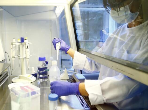 Eski Harvard profesöründen koronavirüs açıklaması: Yakın zamanda bulunmayacak