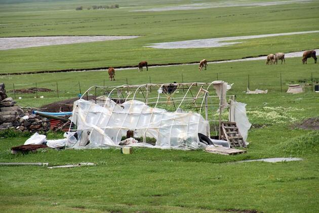 Türkiye'nin doğusunu fırtına vurdu: Ağaçlar ve direkler devrildi, çatılar uçtu