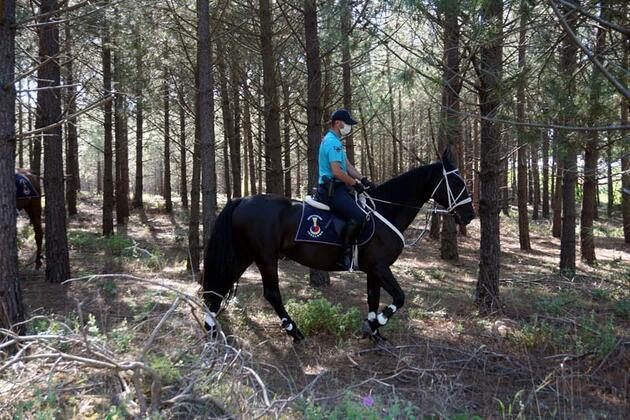 Kilyos'ta jandarma atlı birlikleri ormanda denetim yaptı