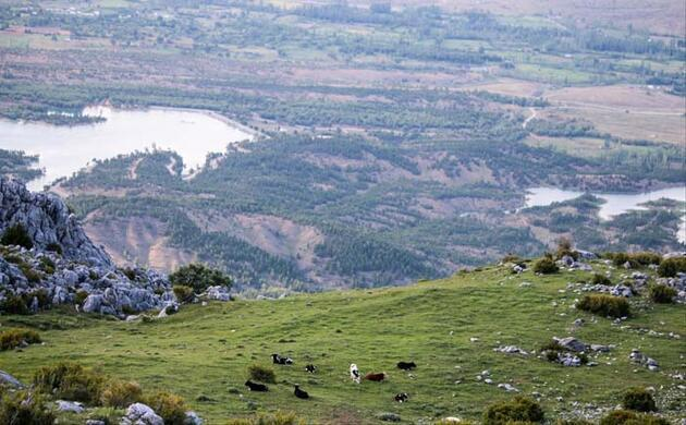Küpe Dağı'nda ilkbahar manzarası