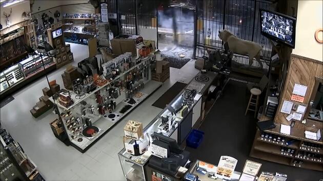 ABD'de silah mağazası böyle yağmalandı!