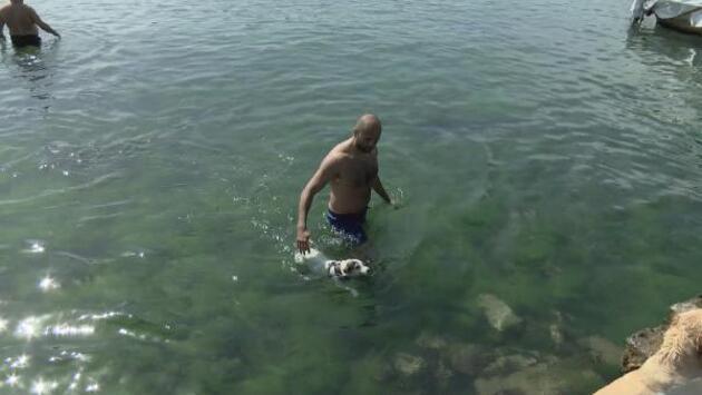 Yasaksız ilk hafta sonunda Bebek Sahili doldu taştı
